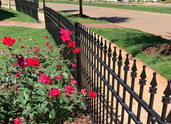 fencing short